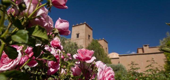 Kelaat M Gouna Rose Festival Morocco